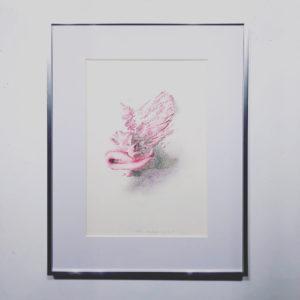 杉田陽平の画像 p1_17