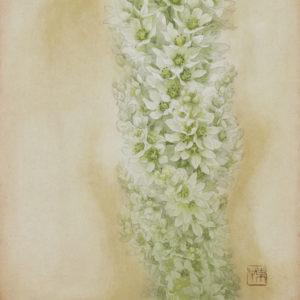"""Okamoto Toko """"Full bloom"""" 2013"""