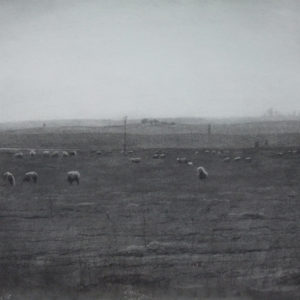 "Hara Takahiro ""羊の在る風景"" 2012"