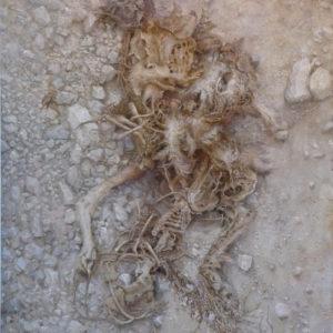 """Hara Takahiro """"perro muerto"""" 2009"""