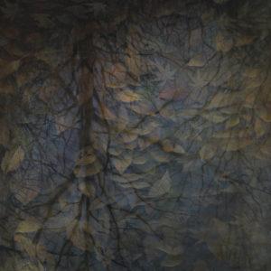 """Hara Takahiro """"Hojas muertas"""" 2016"""