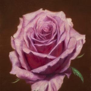 """Mishima Tetsuya """"Pink Rose"""" 2018"""