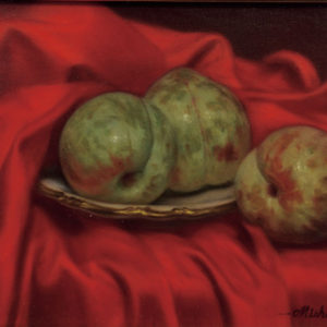 "Mishima Tetsuya ""赤い布とソルダム"" 2010"