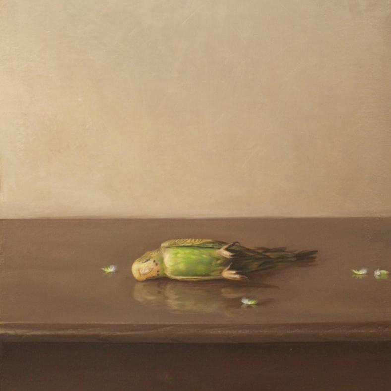 """原 崇浩 """"Un periquito"""" 2011"""