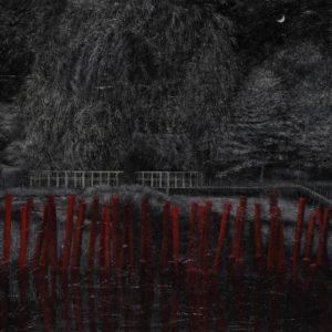 """Takagi Yo """"Red stakes"""" 2013"""
